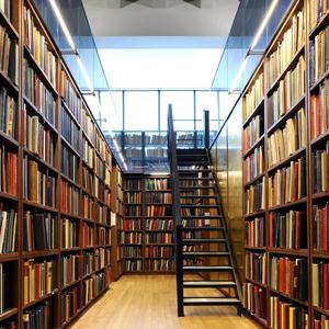 Библиотеки Новых Бурасов