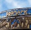 Зоопарки в Новых Бурасах